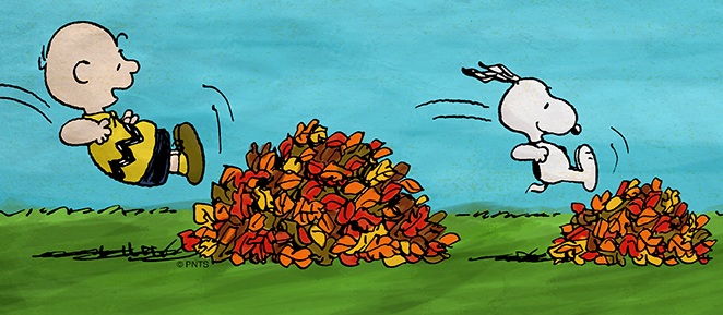 Snoopy jumping in leaf pile
